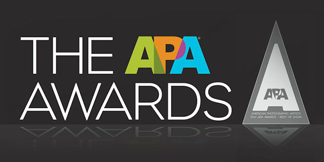 APA-Awards-2014
