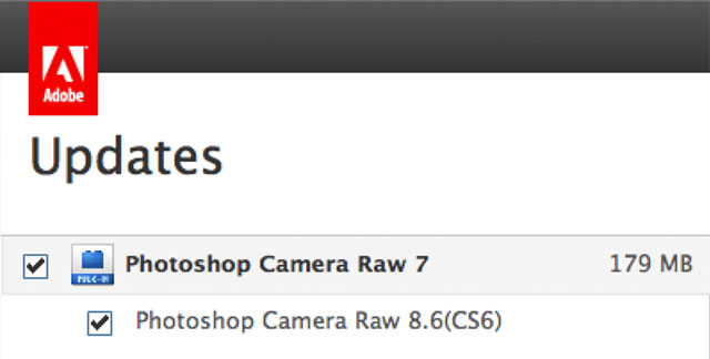 how to update camera raw