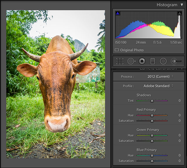 Lightroom-Adobe-Standard