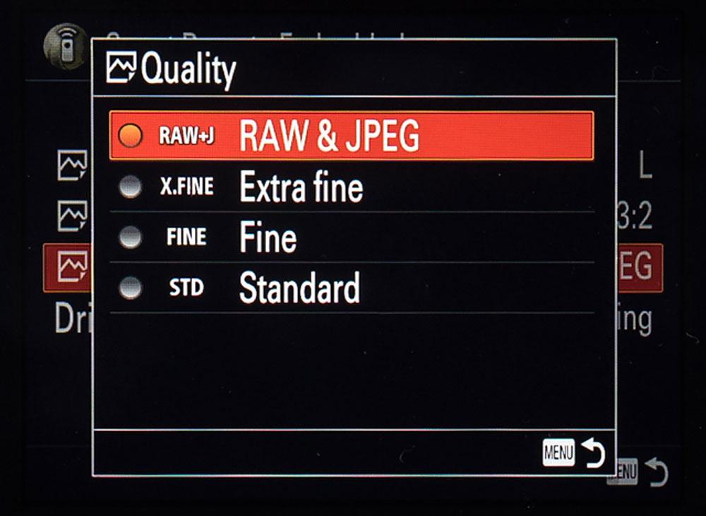 Sony Remote Camera Control Raw + Jpeg