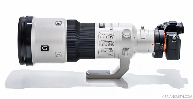 Sony a7RII + Sony 500mm F4 G