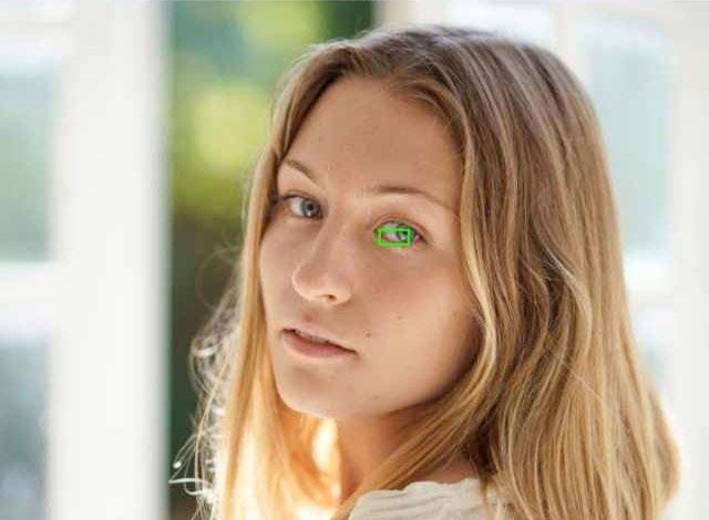 Sony-Eye-AF