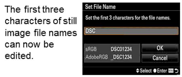 Sony-a99II-Custom-File-Names