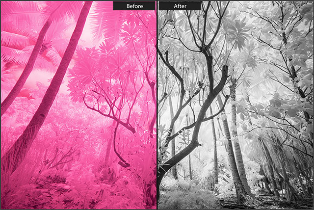 830NM-Infrared-Conversion-Before-After