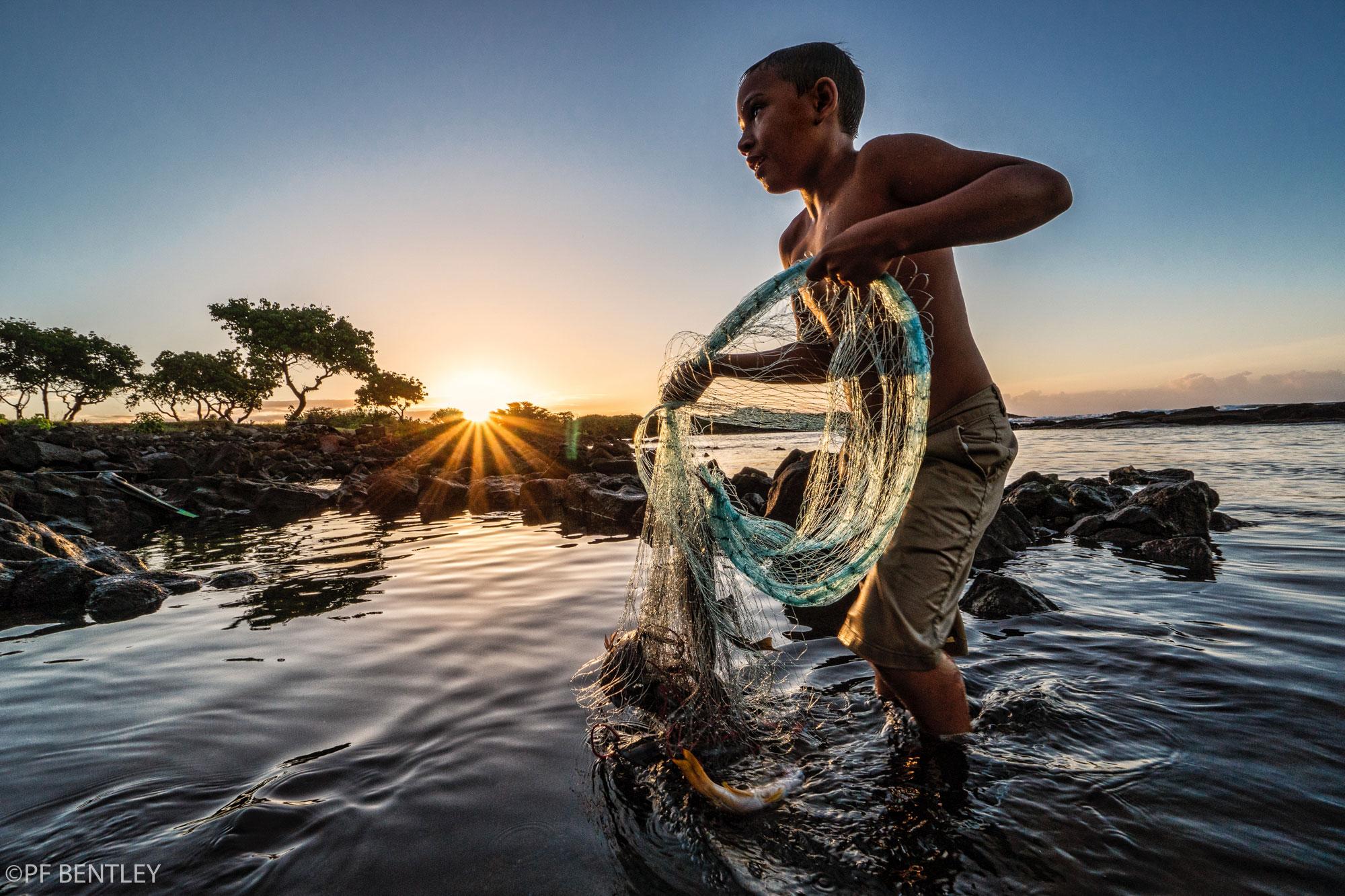 Ku'ike Luta, 8 years old gathers fish at Hono'apo. He is the nephew of Nohea Ka'awa. There is a kahakō over the u in his first name.