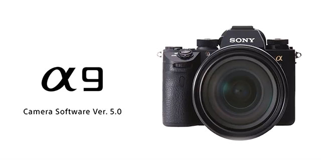 Here's What's New in Sony a9 Firmware 5 00