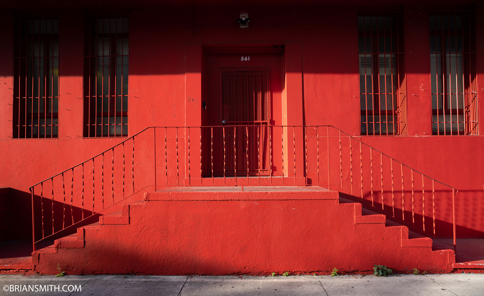 Sony FE 20mm F1.8 G Wynwood in Red