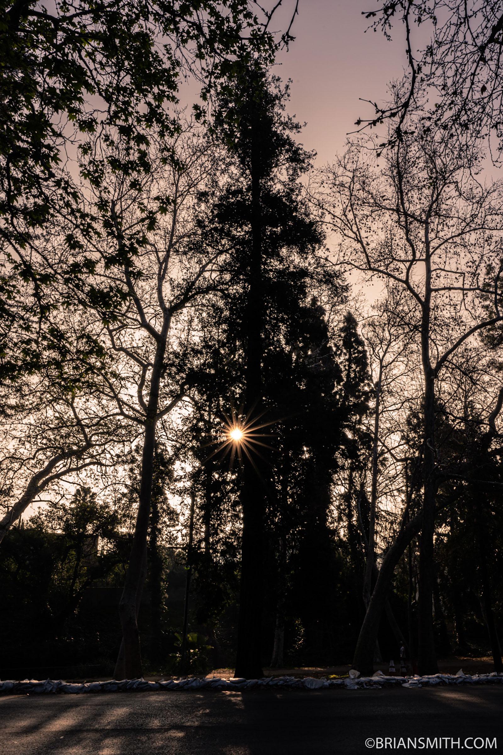 Sony FE 20mm F2.8 G lens sunstar at F22