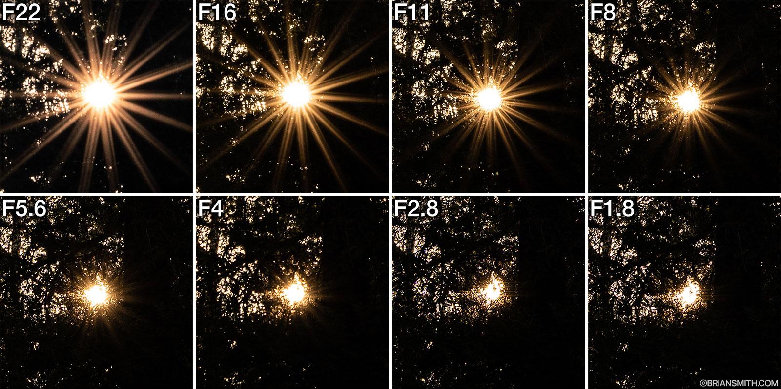Sony FE 20mm F1.8 G Sun Stars