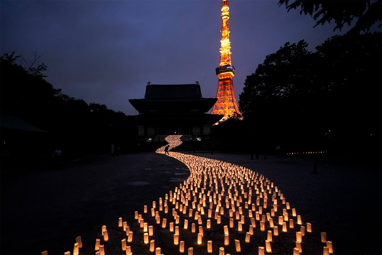thousands of candles are arranged in the shape of the Milky Way to celebrate Tanabata, a Japanese star festival, at Zojoji Temple